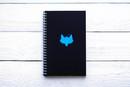 Maxgoodz Скетчбук Classic Fat Бирюзовый, двойная обложка, A5, 48л, 120г/м2, пружина