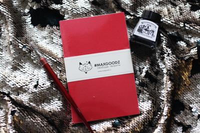 """Тушь WINSOR&NEWTON """"DRAWING INKS"""" 14 мл, черная китайская (""""Паук"""") + держатель и перо для каллиграфии Cretacolor + скетчбук Maxgoodz Pocket A6"""