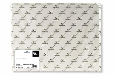 Бумага для маркера The Wall 220гр/м.кв 50х70см - 1 лист